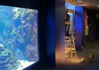 aquarium sur mure