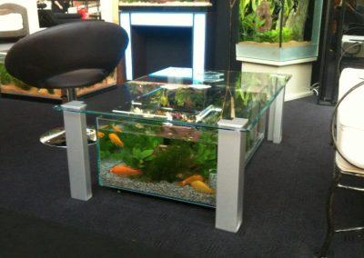 aquatic-2